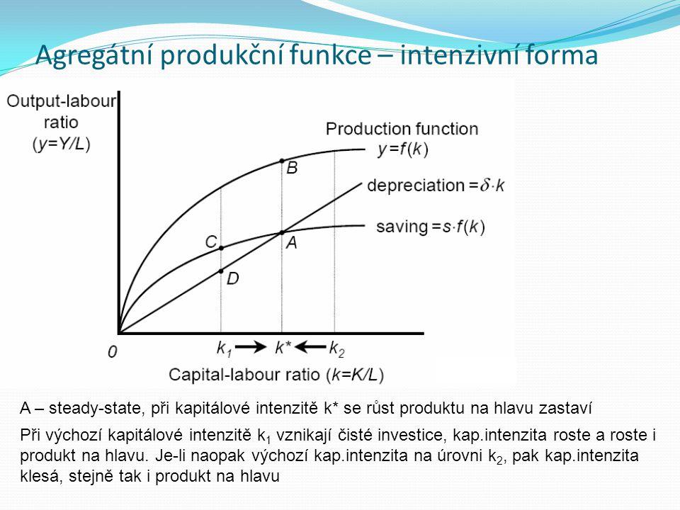 Agregátní produkční funkce – intenzivní forma