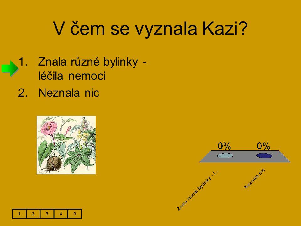 V čem se vyznala Kazi Znala různé bylinky - léčila nemoci Neznala nic