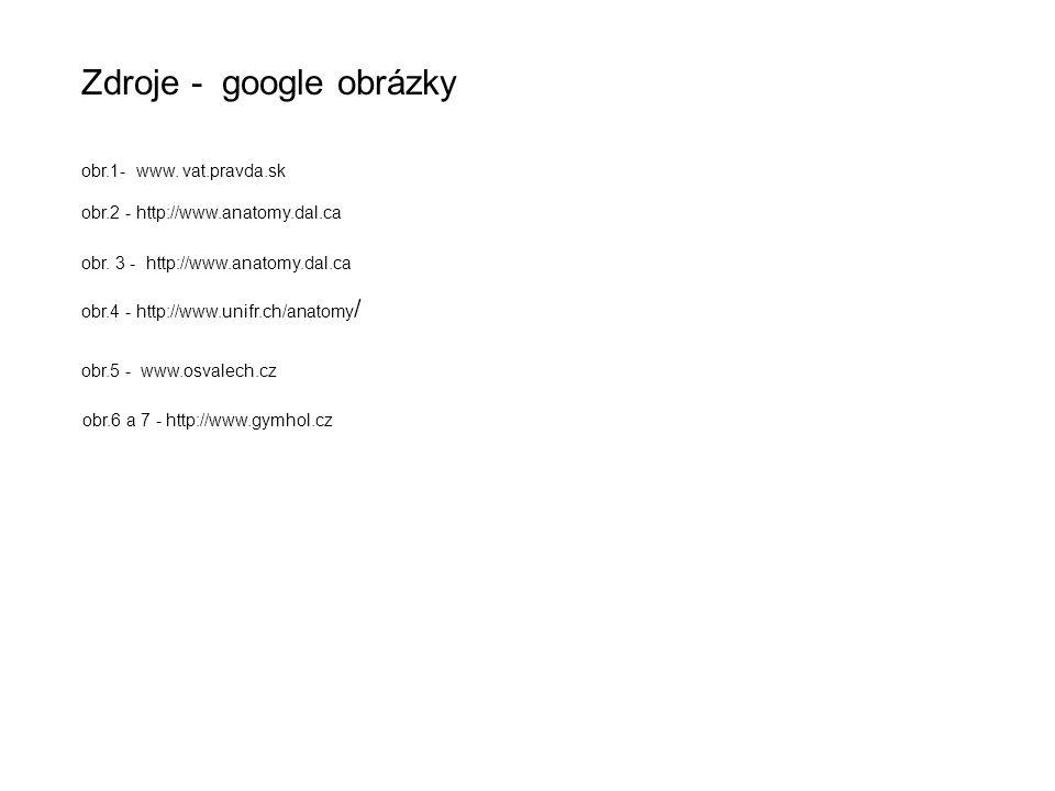 Zdroje - google obrázky