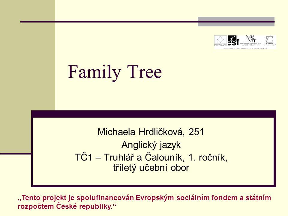 TČ1 – Truhlář a Čalouník, 1. ročník, tříletý učební obor
