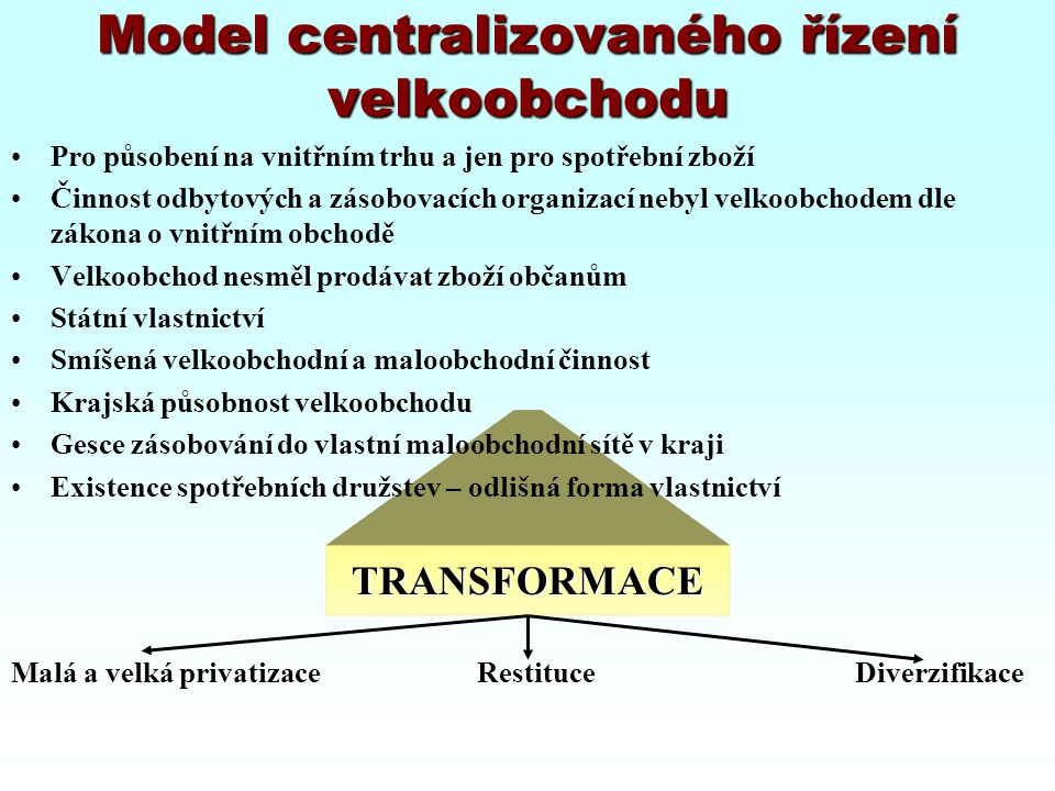 Model centralizovaného řízení velkoobchodu