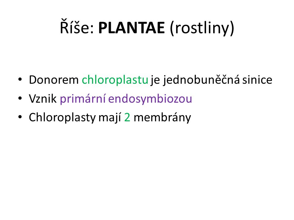 Říše: PLANTAE (rostliny)