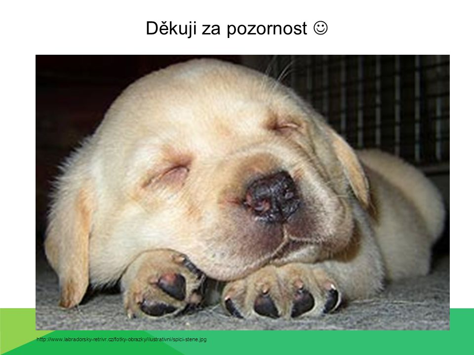 Děkuji za pozornost  http://www.labradorsky-retrivr.cz/fotky-obrazky/ilustrativni/spici-stene.jpg