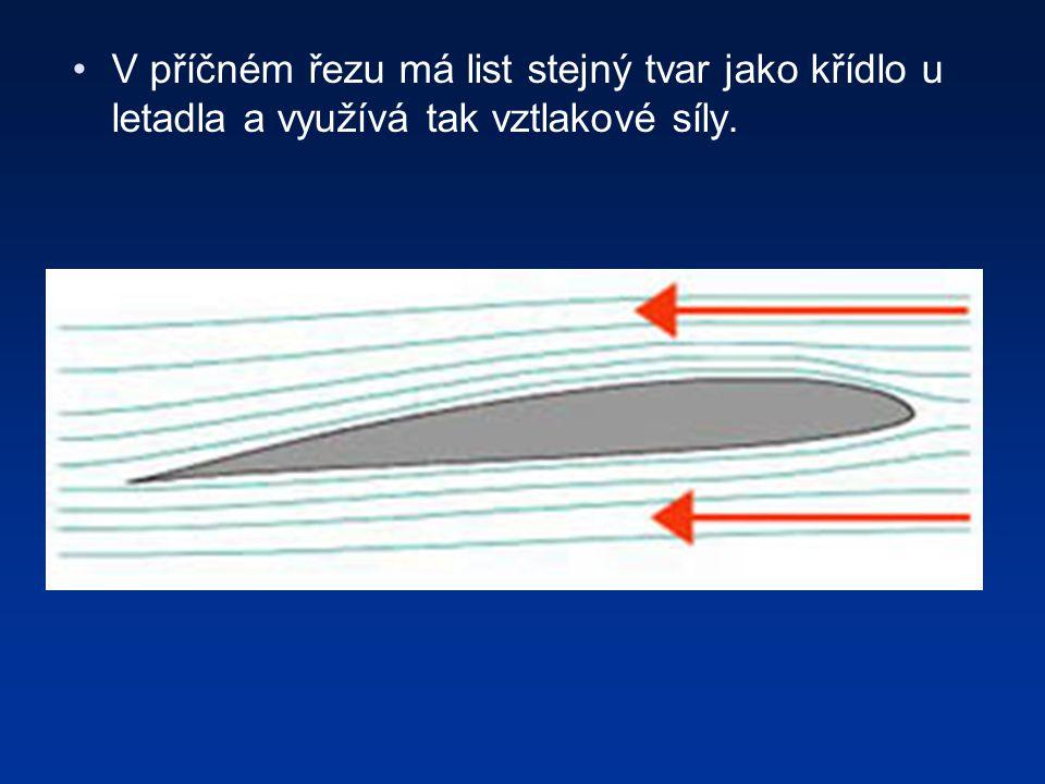 V příčném řezu má list stejný tvar jako křídlo u letadla a využívá tak vztlakové síly.