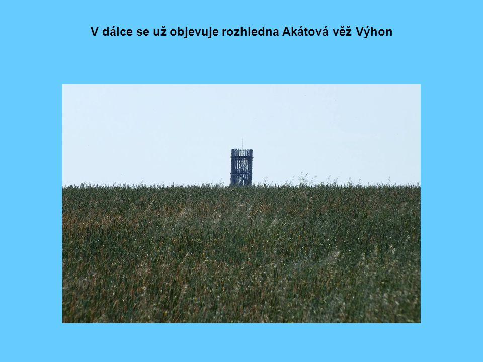V dálce se už objevuje rozhledna Akátová věž Výhon