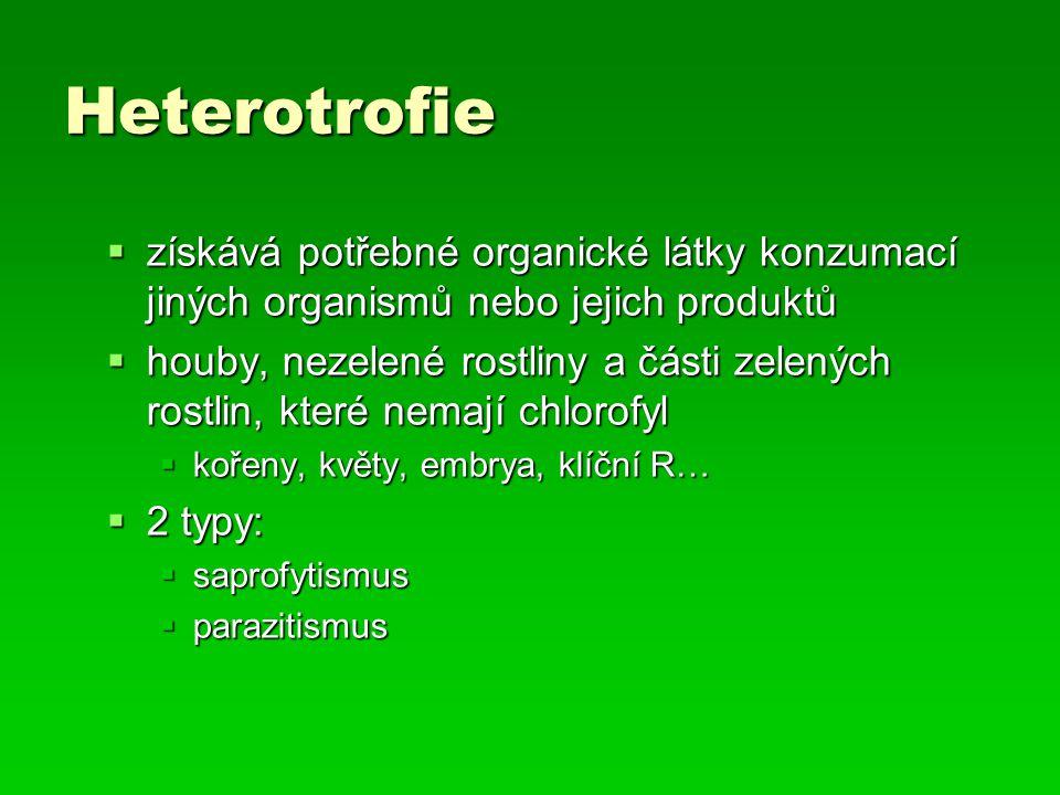 Heterotrofie získává potřebné organické látky konzumací jiných organismů nebo jejich produktů.