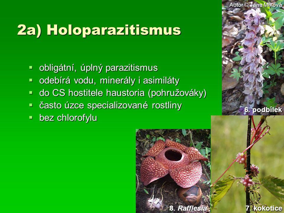 2a) Holoparazitismus obligátní, úplný parazitismus
