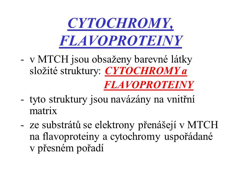 CYTOCHROMY, FLAVOPROTEINY