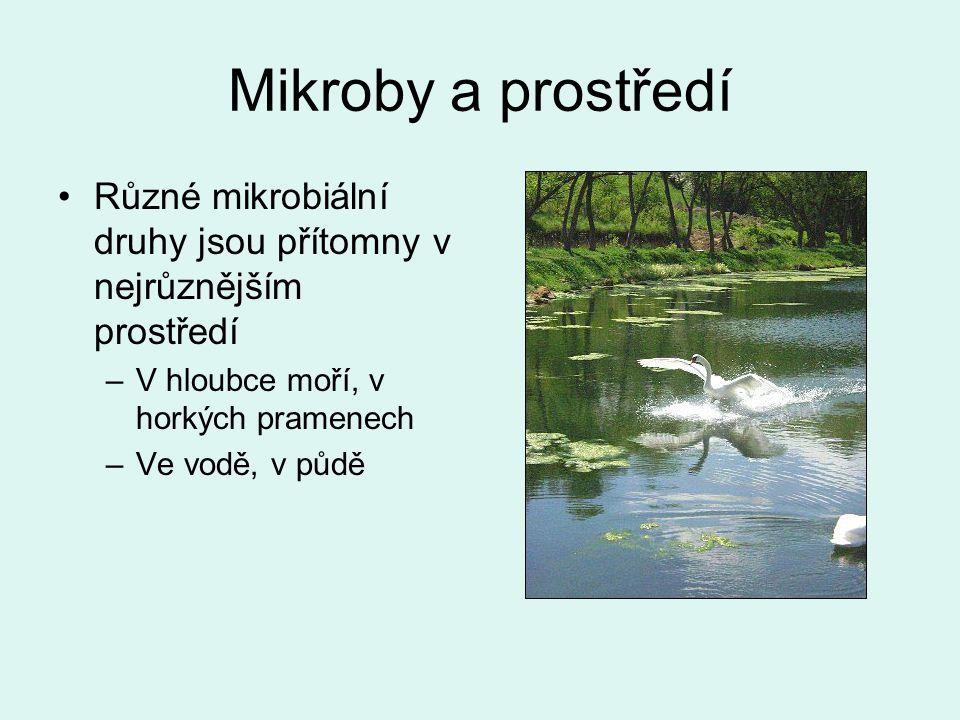 Mikroby a prostředí Různé mikrobiální druhy jsou přítomny v nejrůznějším prostředí. V hloubce moří, v horkých pramenech.