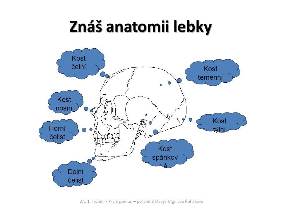 ZA, 1. ročník / První pomoc – poranění hlavy/ Mgr. Eva Řeháková