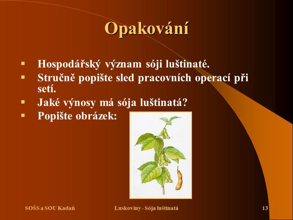 Luskoviny - Sója luštinatá