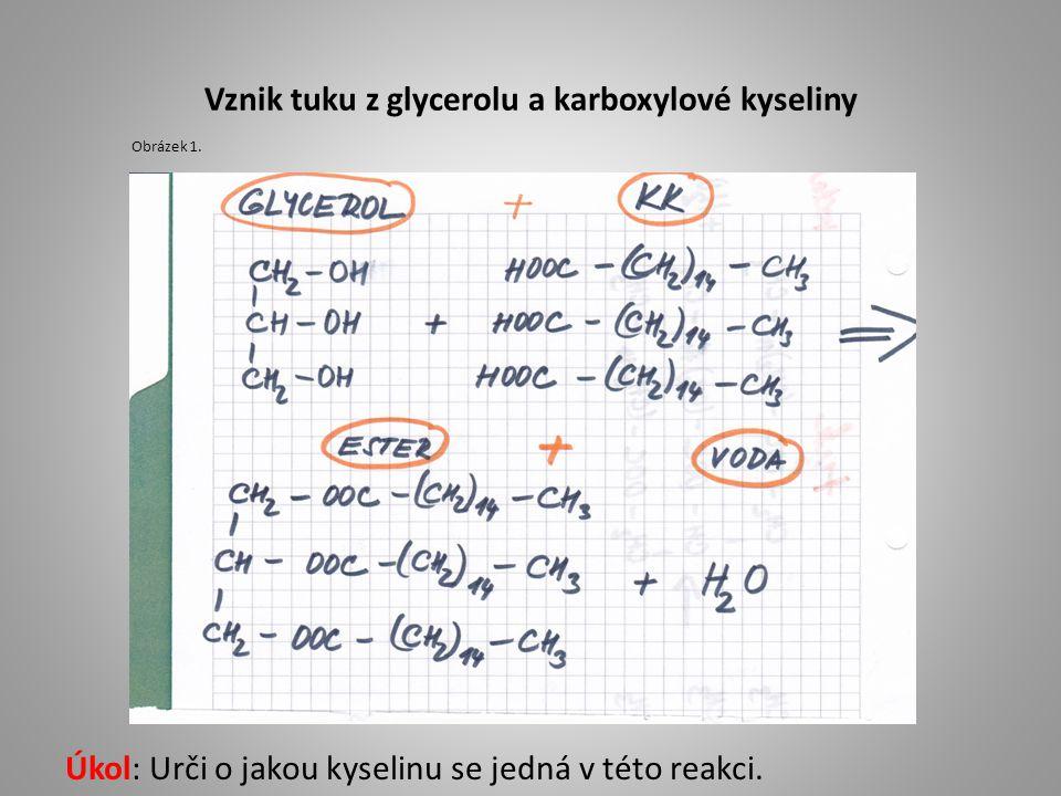 Vznik tuku z glycerolu a karboxylové kyseliny