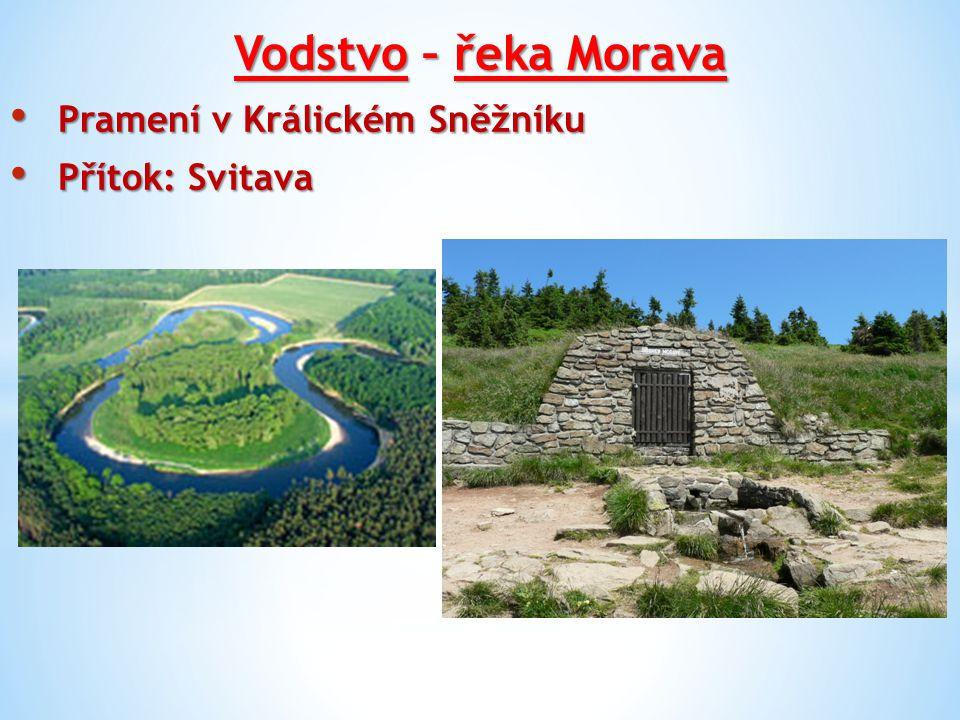 Vodstvo – řeka Morava Pramení v Králickém Sněžníku Přítok: Svitava
