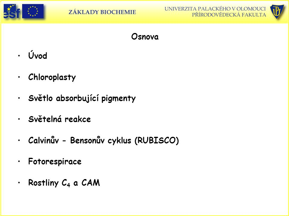 Osnova Úvod. Chloroplasty. Světlo absorbující pigmenty. Světelná reakce. Calvinův - Bensonův cyklus (RUBISCO)