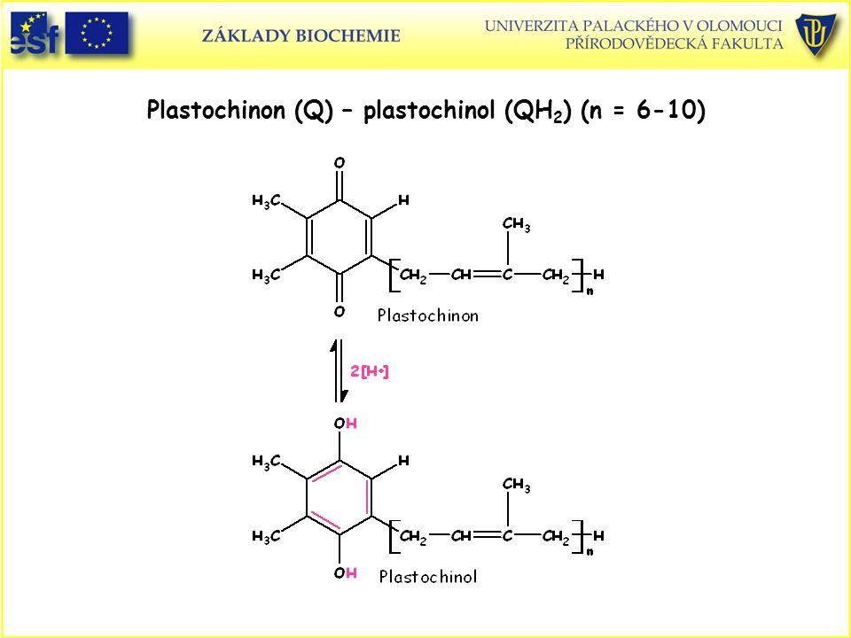 Plastochinon (Q) – plastochinol (QH2) (n = 6-10)