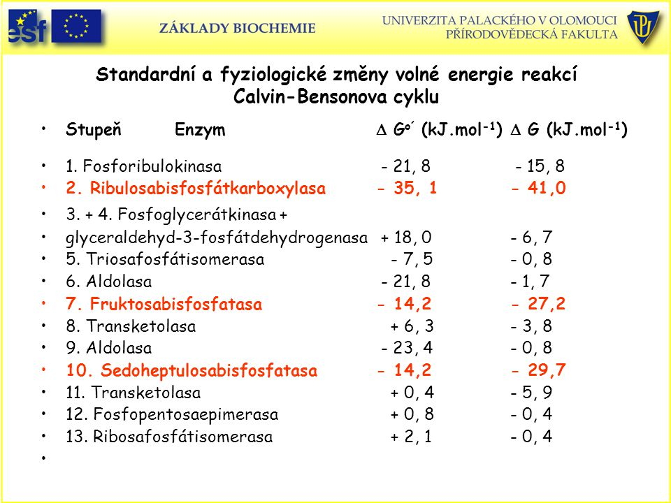 Standardní a fyziologické změny volné energie reakcí Calvin-Bensonova cyklu