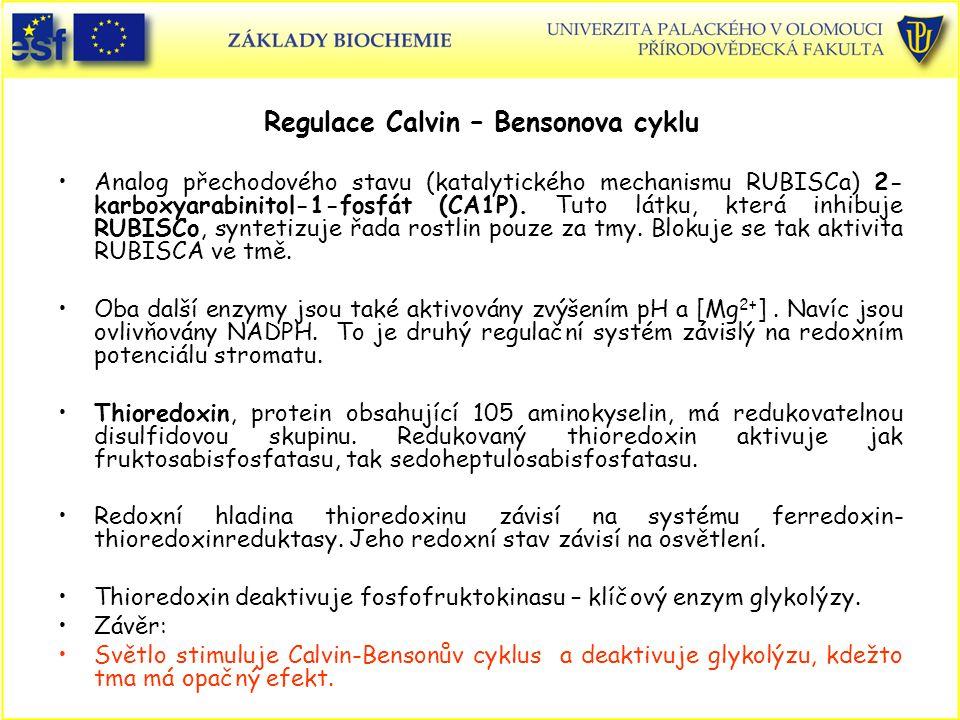 Regulace Calvin – Bensonova cyklu
