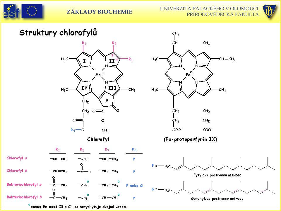 Struktury chlorofylů Struktury chlorofylů