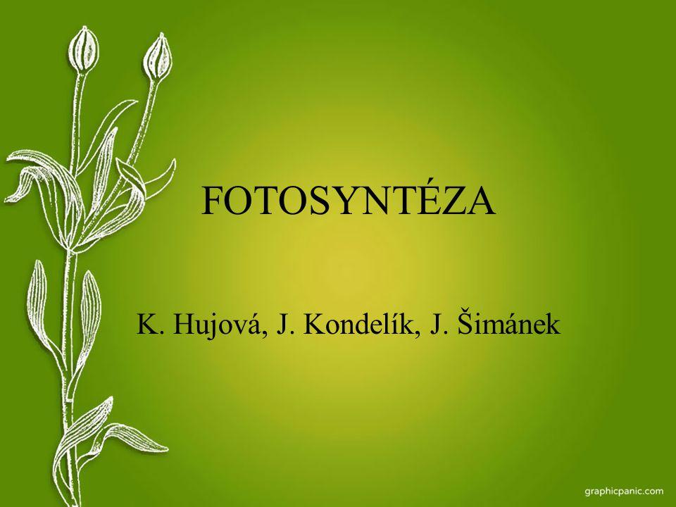 K. Hujová, J. Kondelík, J. Šimánek