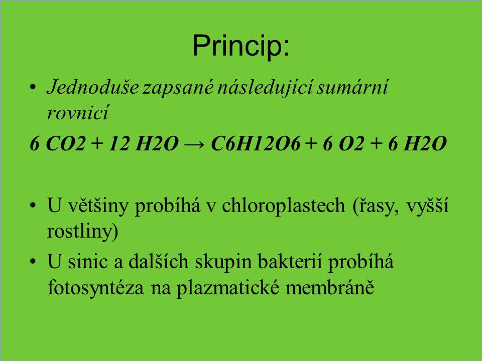 Princip: Jednoduše zapsané následující sumární rovnicí