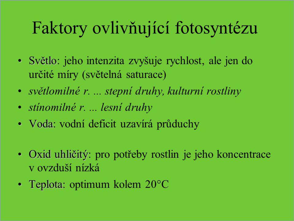 Faktory ovlivňující fotosyntézu