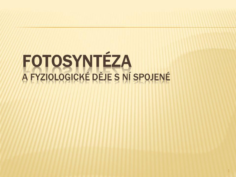 Fotosyntéza a fyziologické děje s ní spojené