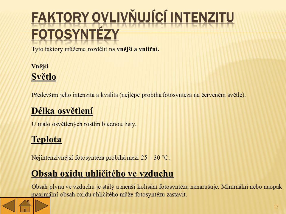 Faktory ovlivňující intenzitu fotosyntézy
