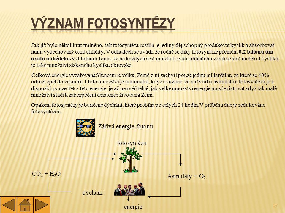 Význam fotosyntézy Zářivá energie fotonů fotosyntéza CO2 + H2O