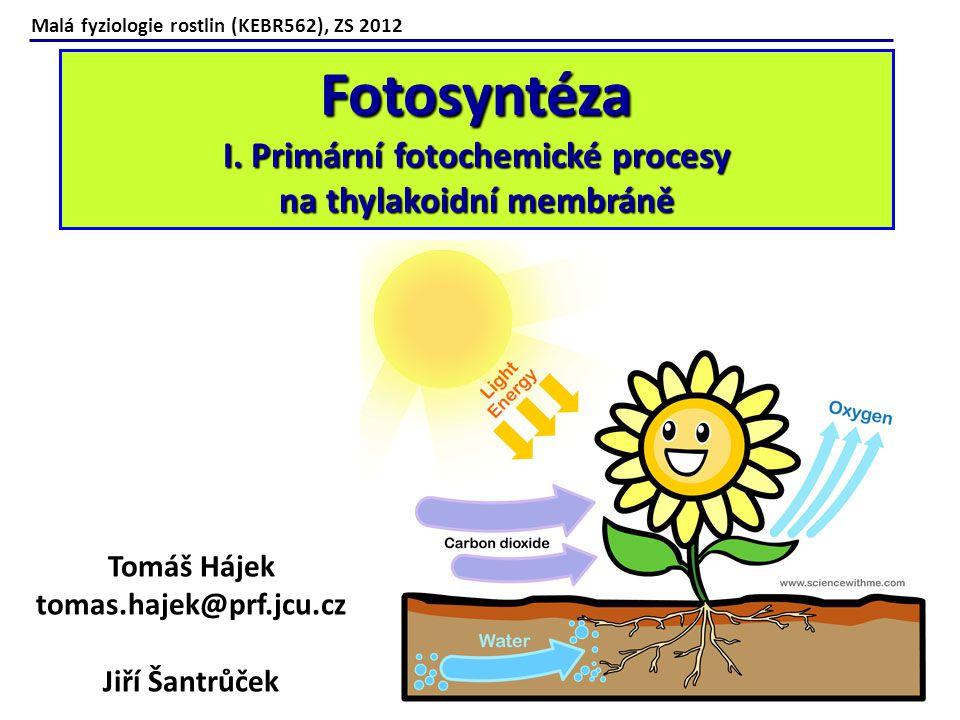 Fotosyntéza I. Primární fotochemické procesy na thylakoidní membráně