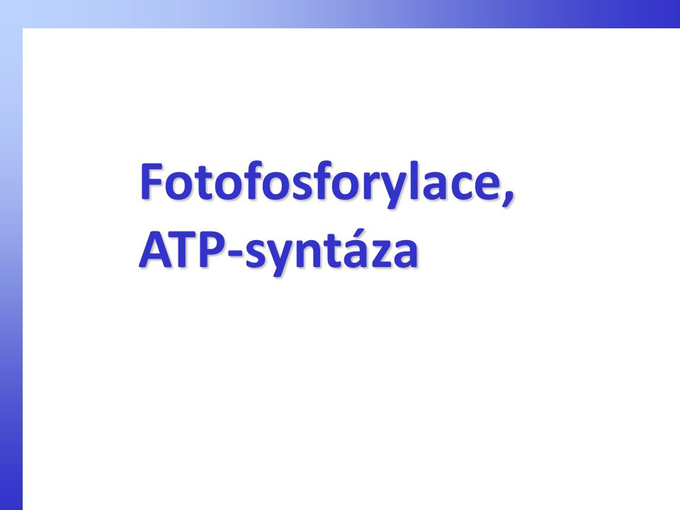 Fotofosforylace, ATP-syntáza
