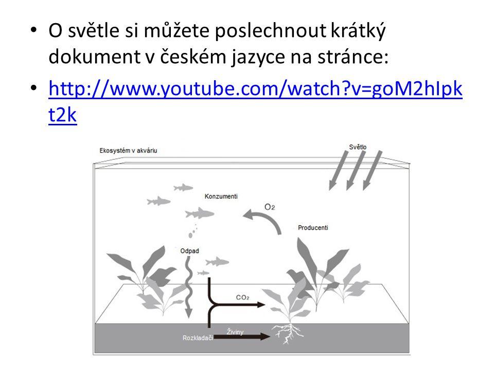 O světle si můžete poslechnout krátký dokument v českém jazyce na stránce: