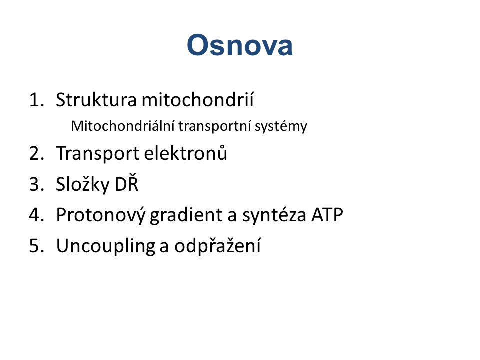 Osnova Struktura mitochondrií Transport elektronů Složky DŘ