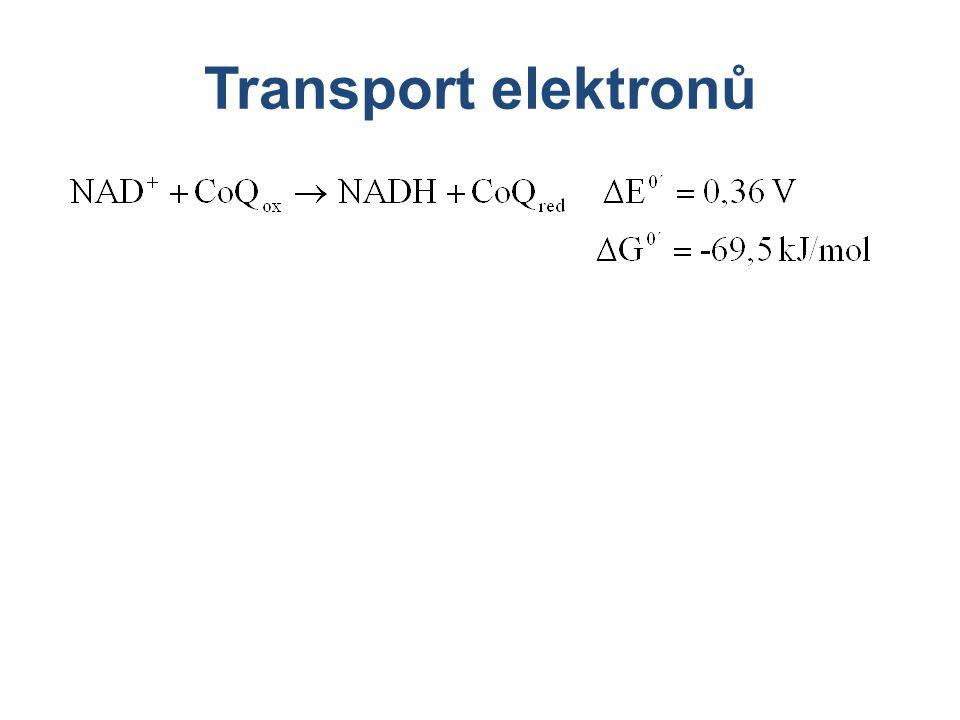 Transport elektronů
