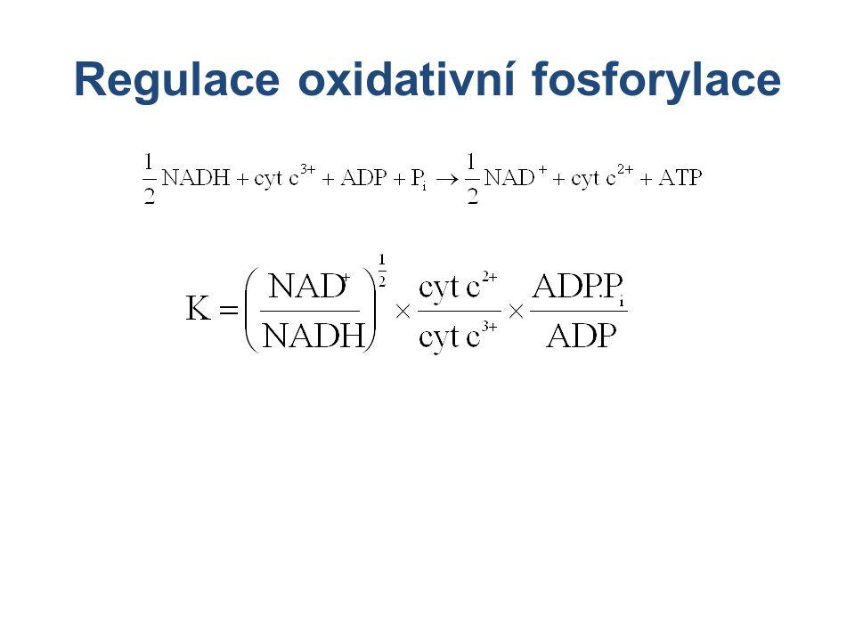 Regulace oxidativní fosforylace