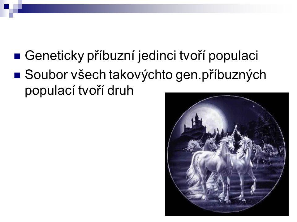 Geneticky příbuzní jedinci tvoří populaci