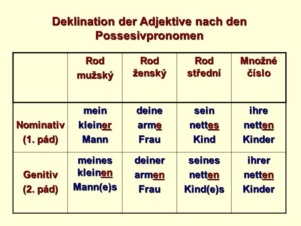 Deklination der Adjektive nach den Possesivpronomen