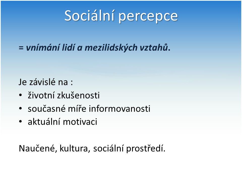 Sociální percepce = vnímání lidí a mezilidských vztahů.