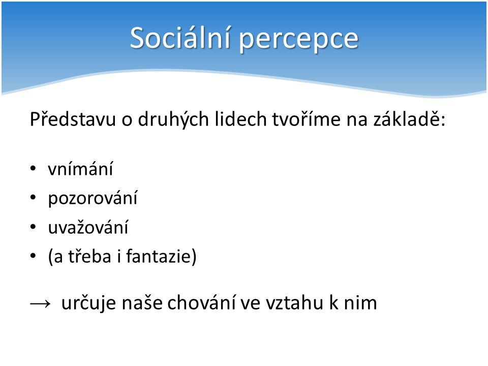 Sociální percepce Představu o druhých lidech tvoříme na základě: