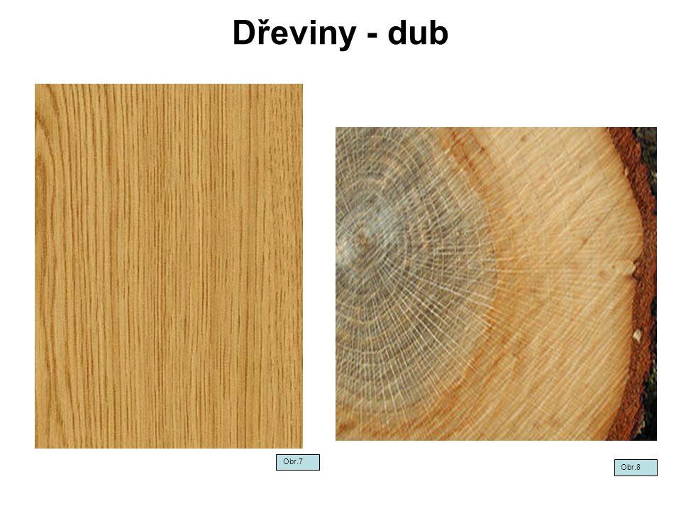 Dřeviny - dub Obr.7 Obr.8