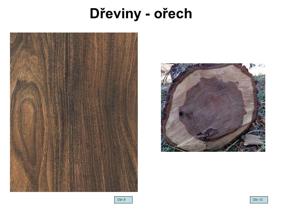 Dřeviny - ořech Obr.9 Obr.10