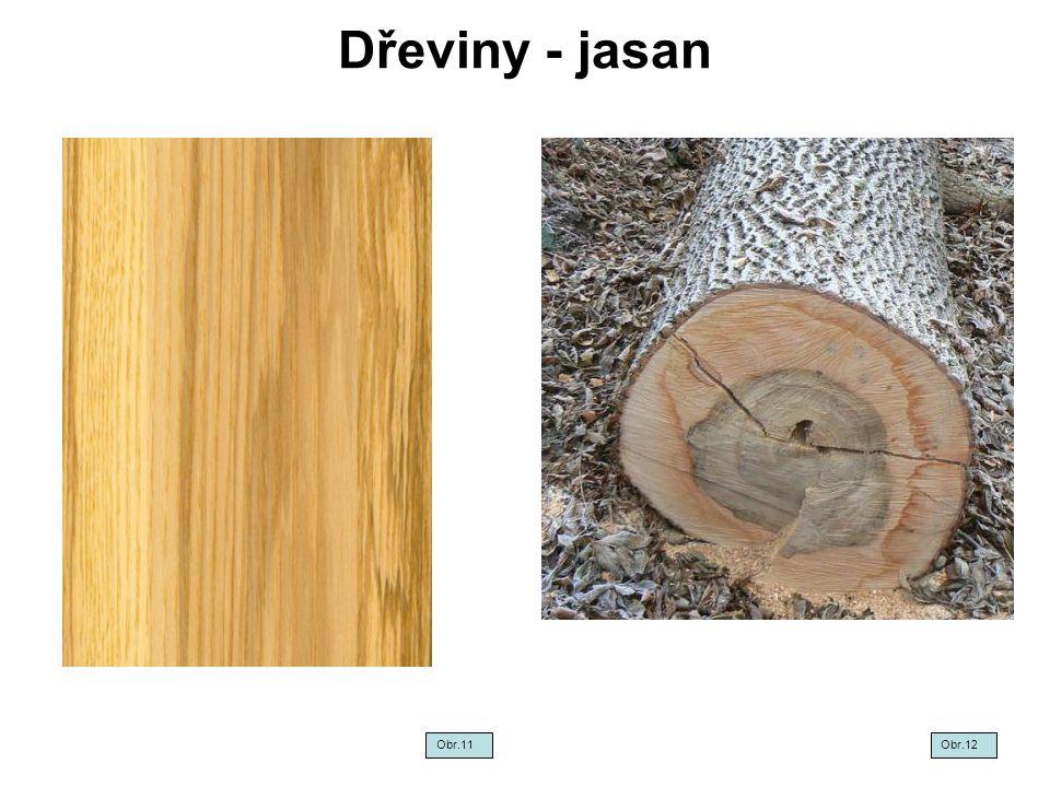 Dřeviny - jasan Obr.11 Obr.12
