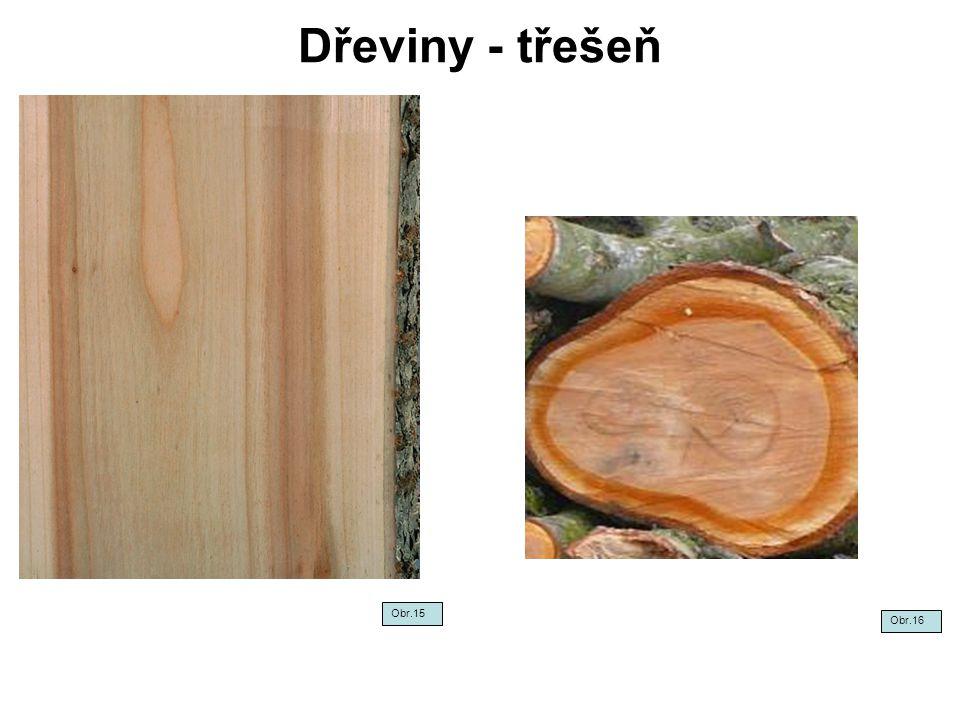 Dřeviny - třešeň Obr.15 Obr.16