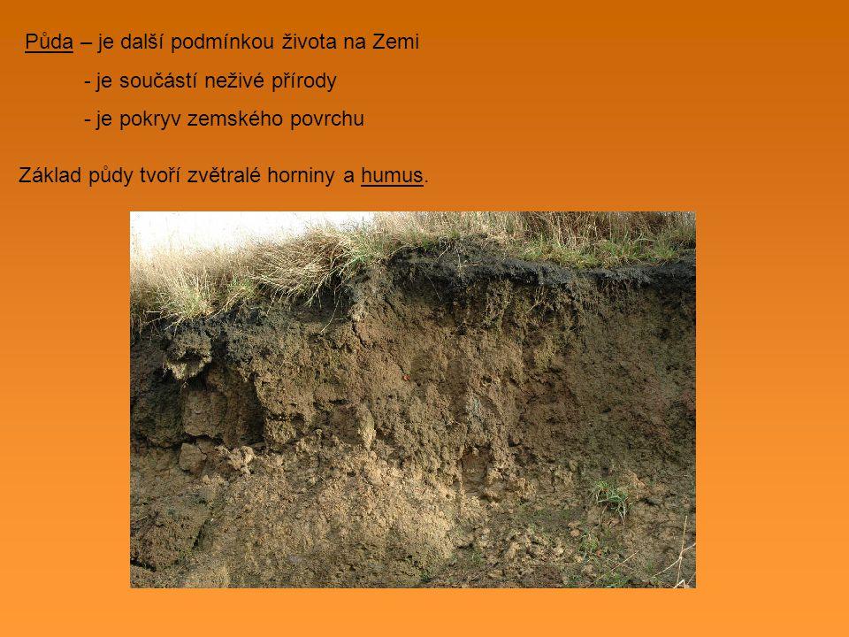 Půda – je další podmínkou života na Zemi