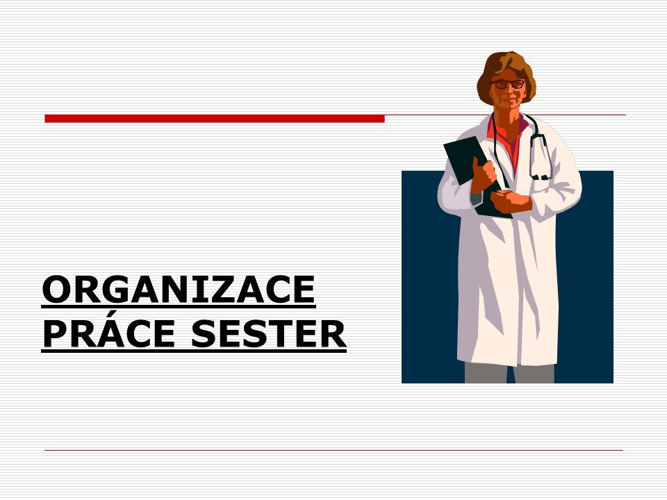 ORGANIZACE PRÁCE SESTER