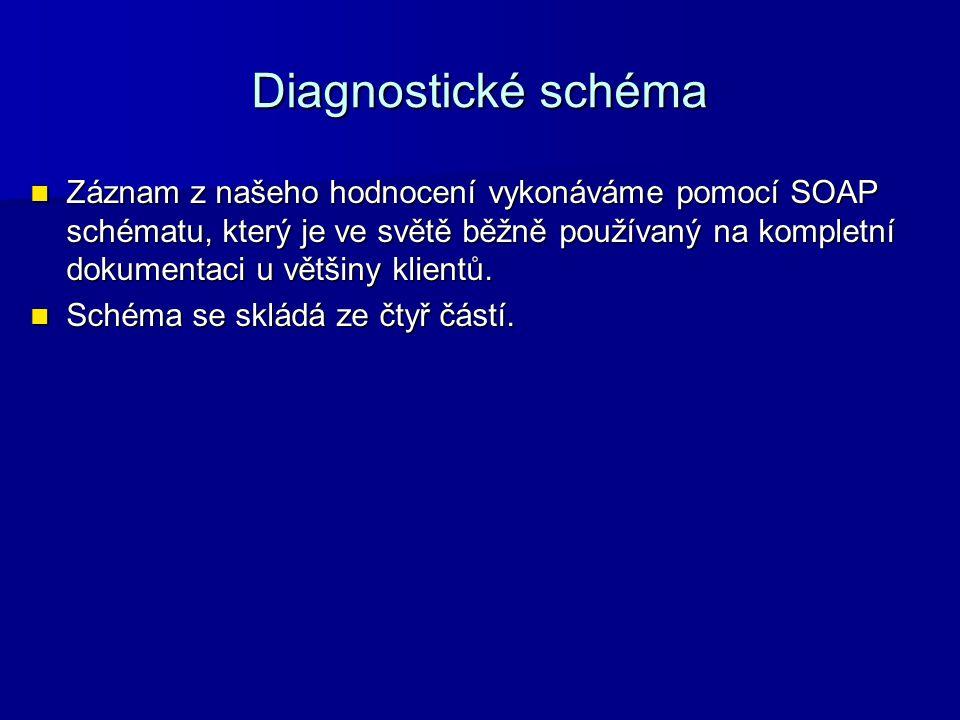 Diagnostické schéma