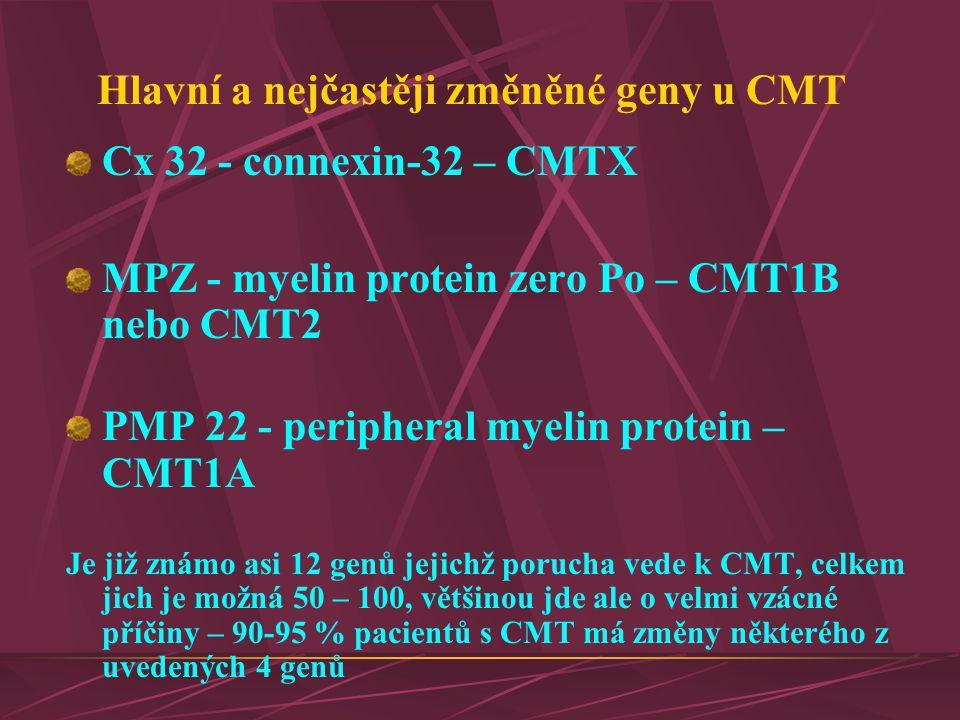 Hlavní a nejčastěji změněné geny u CMT