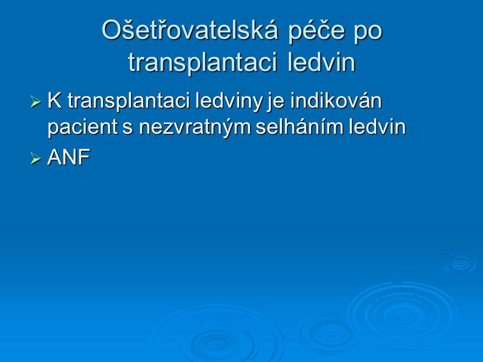 Ošetřovatelská péče po transplantaci ledvin