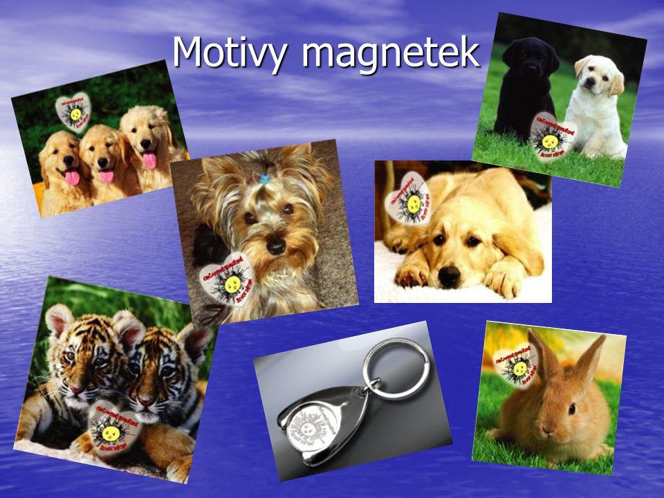 Motivy magnetek