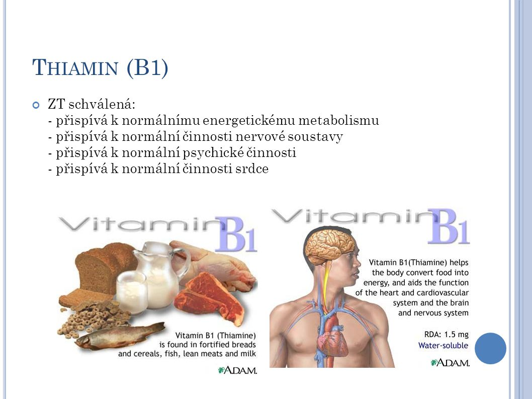 Thiamin (B1)