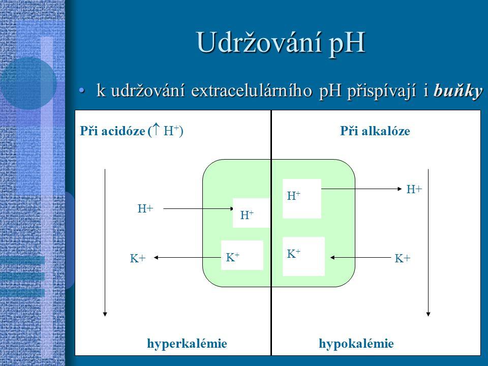 Udržování pH k udržování extracelulárního pH přispívají i buňky